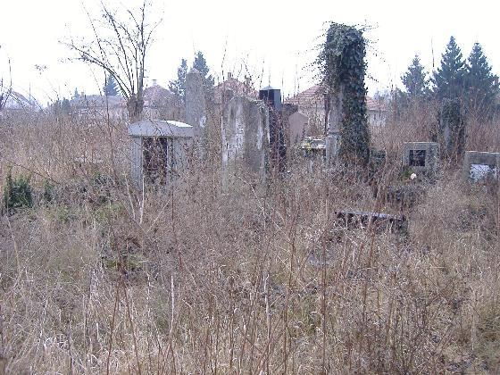 Kunszentmárton forráshiány miatt visszalépett a zsidó temető felújításától