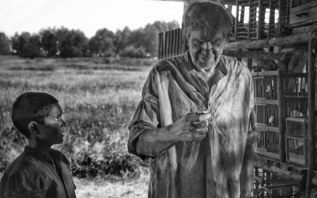 Csehország kemény holokausztfilmjét nevezi az Oscar-díjra