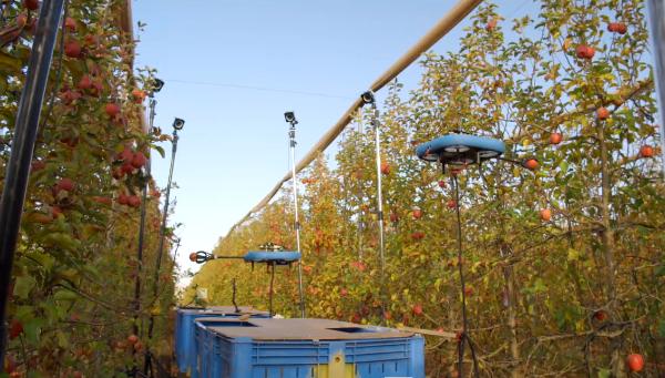 Gyümölcsszedő robotot fejleszt egy izraeli cég