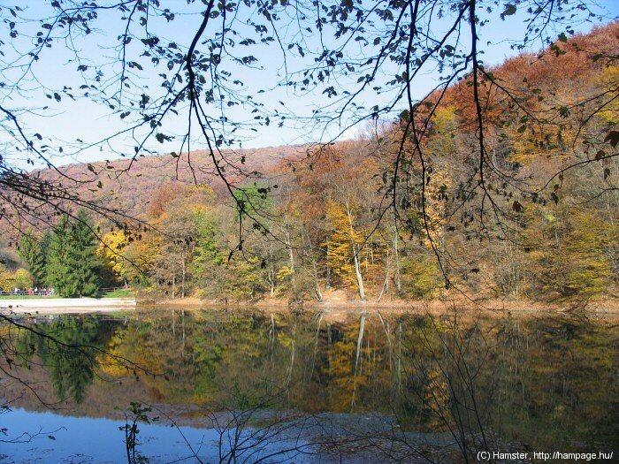 ősz,_tóval.jpg