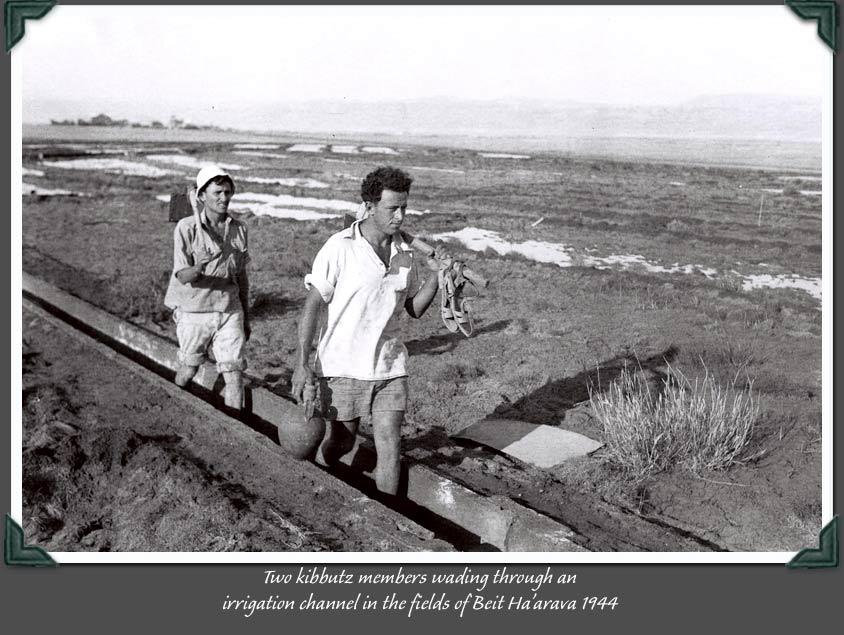 Földművesek az öntözőcsatornában - Bet Arava, 1947.jpg