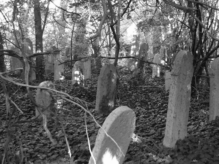 kozma utcai temető.jpg