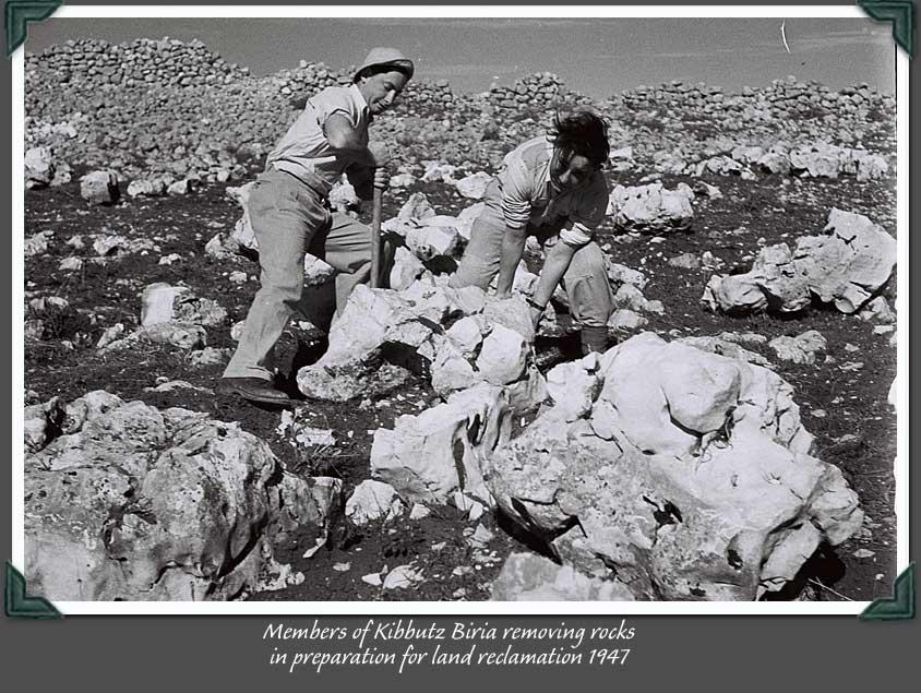 Küszködés a sziklás földdel - Biria kibuc 1937.jpg