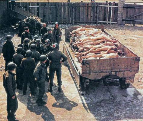 Akiket már nem lehetett megmenteni, Auschwitz
