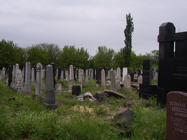 temetőcikk_kozmautca.jpg