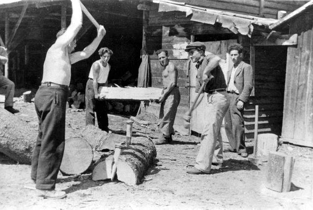 14 - Életkép a feldafingi táborból - 1945 (Fotó Yadvashem.rog)