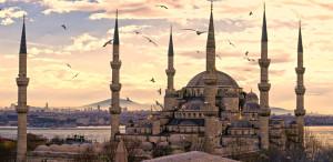 mecset