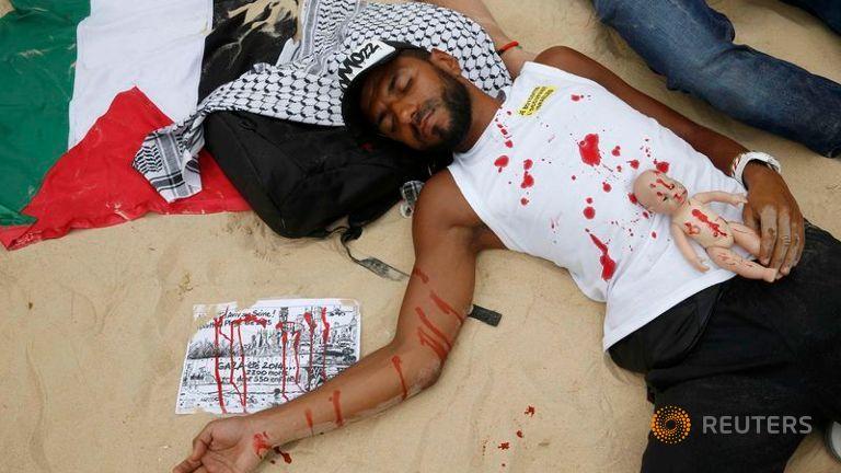 palesztin művér