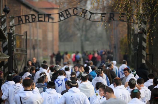 auschwitz youth