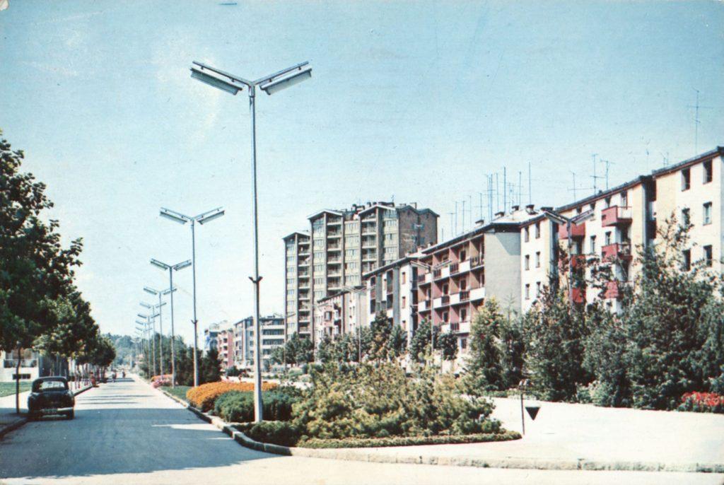 sugarut 1966