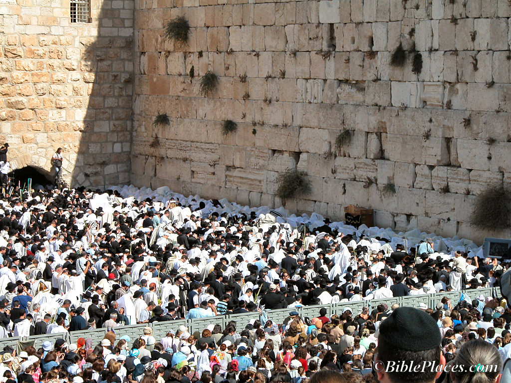 priestly_blessing_at_western_wall_tb101303182