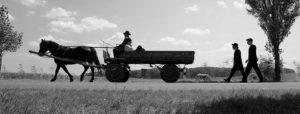 """""""Ez a múlt még nem múlt"""" – Programsorozattal készülnek az 1945 című film bemutatójára"""